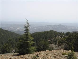 troodos-mountain-walks