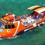 nemo-submarine-boat-trip